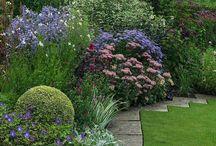 композиции с кустарниками
