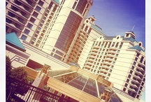 Instagram / by Foxwoods Resort Casino