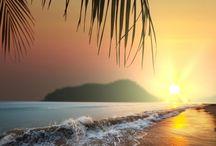 Hawaii Life ♥