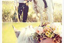 PTF modell og hest