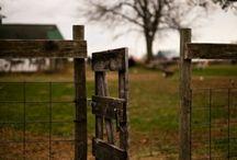 Fencing / Gates