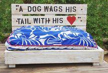 Koiran sänky/Dog bed