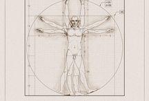 Vitruvian Man explained