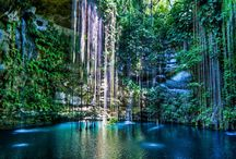 Our favorite Cenotes in the Yucatan Peninsula / We've added our picks of the best cenotes in the Yucatan. Have any you'd like to share with us?