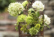 Interesting Flower Arrangements