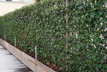 Outdoor privacy walls