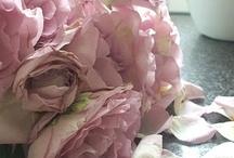 Blommen