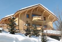 Properties in Meribel / Ski Properties in Les Trois Vallées