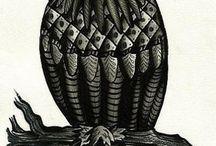 Эскизы сова