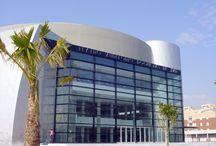 Teatro Auditorio / Auditorium