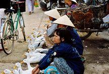 Wanderlust -Thailand/Vietnam/Cambodia Trip