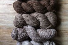 Les laines du Marquenterre / Production de laine bio
