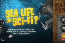 Sea-Life or Sci-Fi / Can you identify which of these creatures are sci-fi characters and which are real sea life creatures?