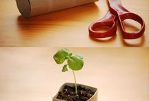 Gardening / by Mimi Wagner