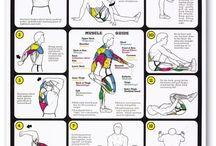 Stretz / Everyday stretching routines :)