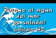 Proyecto: H2O