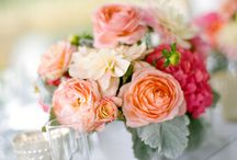Wedding / Ideas for Dec 27 Wedding. (Summer, winery, relaxed, colourful ?)