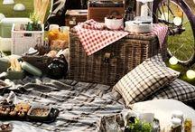 Piknik modu