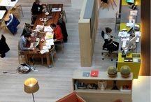 coworking & dream home / Our dream home and office