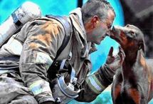 amor bombeiro