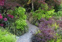 Gardening | Cottage Garden Inspiration / I love the english cottage garden style!