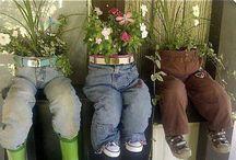 Blomster/urter i krukker og kar.