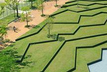 Landscape & step