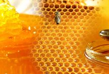 Honey / Famous mastic of ×Chios with honey, it constitutes an ideal combination of two natural products that strengthens our health. It gives splendid flavour to all your cooking and candy-making creations.