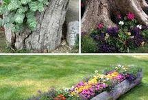 통나무와 꽃