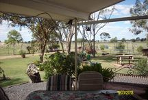 Life Style Property - Moree / Wonderful Family Home on 25 Acres Sale in Moree N/W NSW