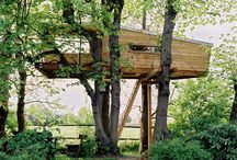 ARCH | Treehouse / by Designet Team