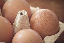 conservare ouă