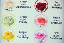 Flower colour messages