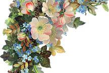 Цветочные орнаменты, Цветы