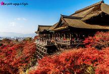 Temple Kyoto