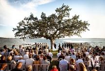 Future wedding / by Laura Gilbert