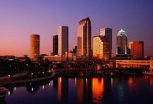 Tampa, FL / Our vacation spot...probably for life. There is so much to do in Tampa and the surrounding areas. We always have such a great time when we visit and I am always looking forward to going back.  / by Kayla Sewell