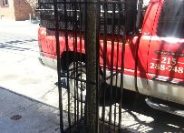 Wrought Iron Tree Guards