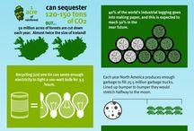 Infográficos Ecológicos