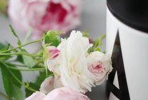 Blomme en Tuine