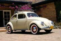I Love Beetle