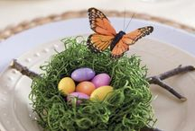 Holiday - Easter / Spring / by Betty Bennett