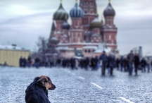 Street Moscow