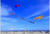 Ottimo Cielo Kites / Kites Day on the Beach