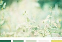 palette | color / inspiring color schemes / by Jaclyn Clayton