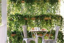 parete verde