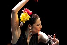 Flamenco Pilar Astola
