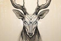 DeerFacts