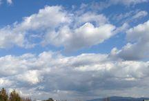ホリ牧場の風景 / 河北潟にあるホリ牧場のいろいろな表情