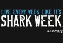 Sharkweek Party / by Hala Essenmacher
